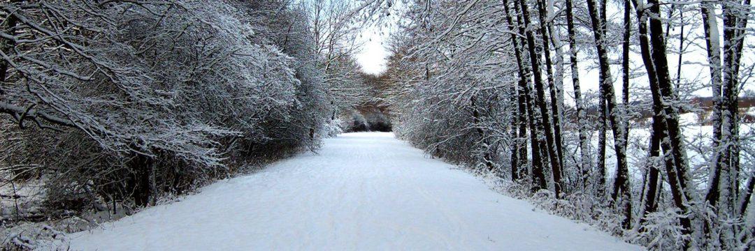 Neufgrange sous la neige