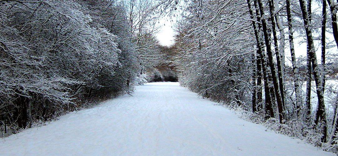 slider – neige